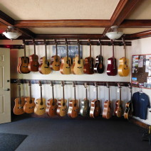 Guitars & Fretted Instruments